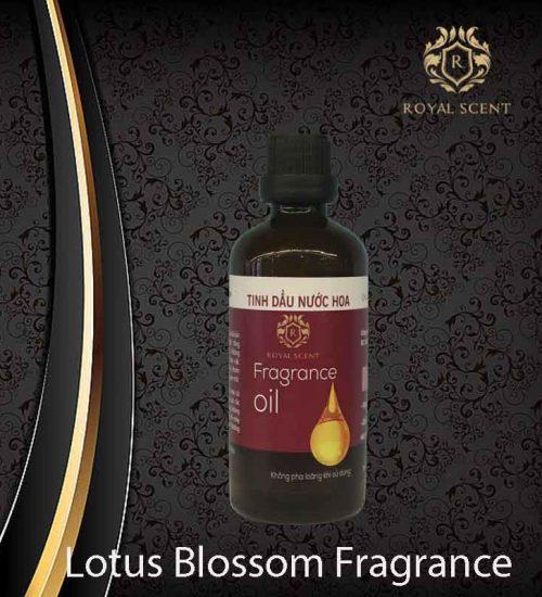 Tinh dầu nước hoa lotus blossom